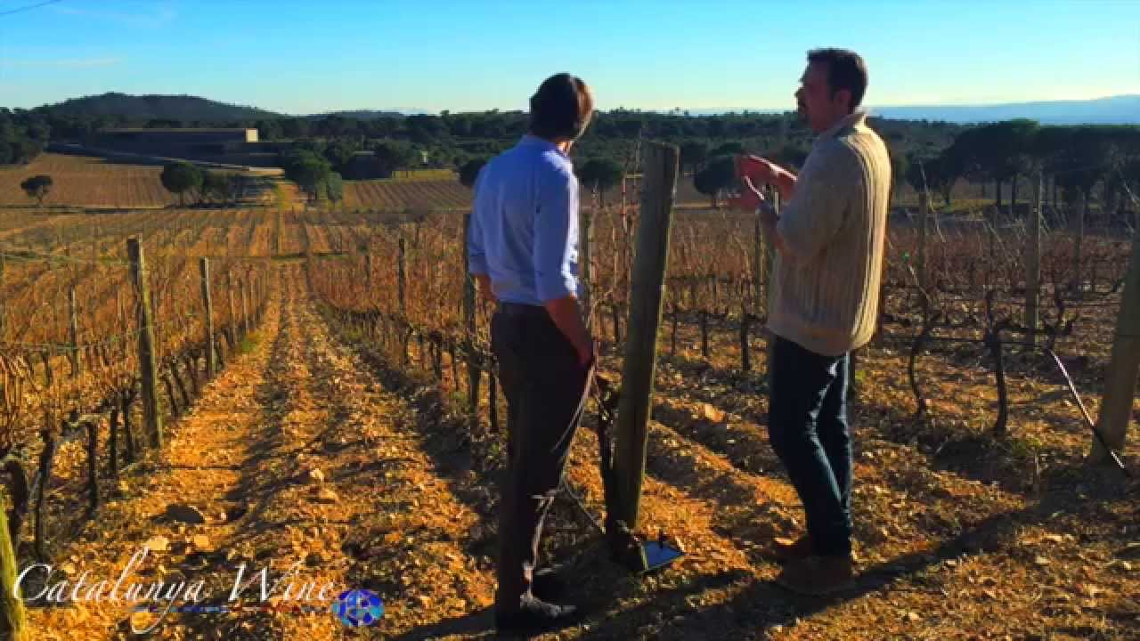 Terra Remota: Where grand designs creates special wines