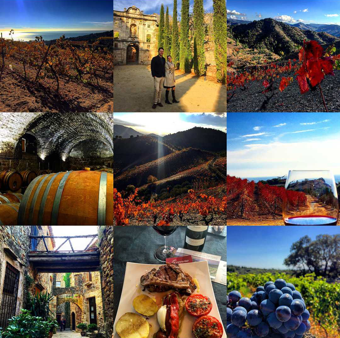 Catalunya Wine's Top 9 on Instagram